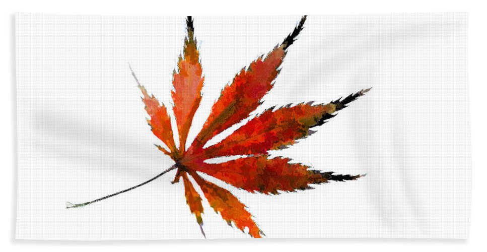 Acer Palmatum Bath Sheet featuring the photograph The Magical Colors Of Fall by Kathy Clark