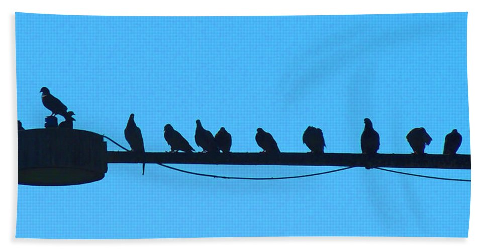 Birds Bath Sheet featuring the photograph The Meeting Place by Heather Coen