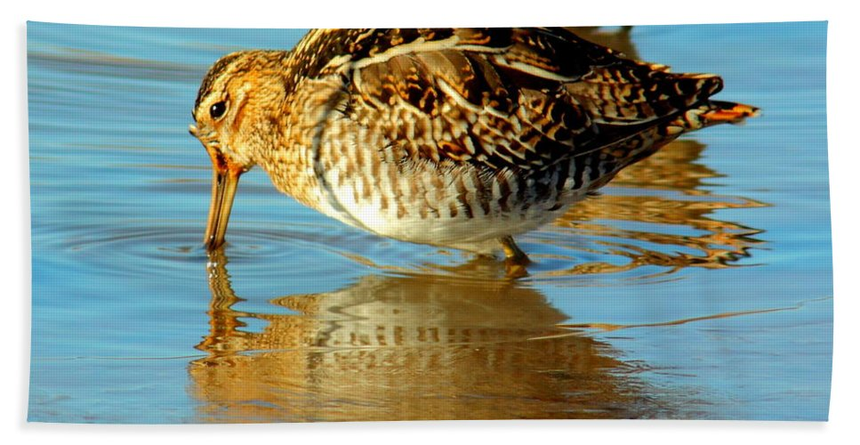 Animal Bath Sheet featuring the photograph The Mythical Snipe by Robert Frederick