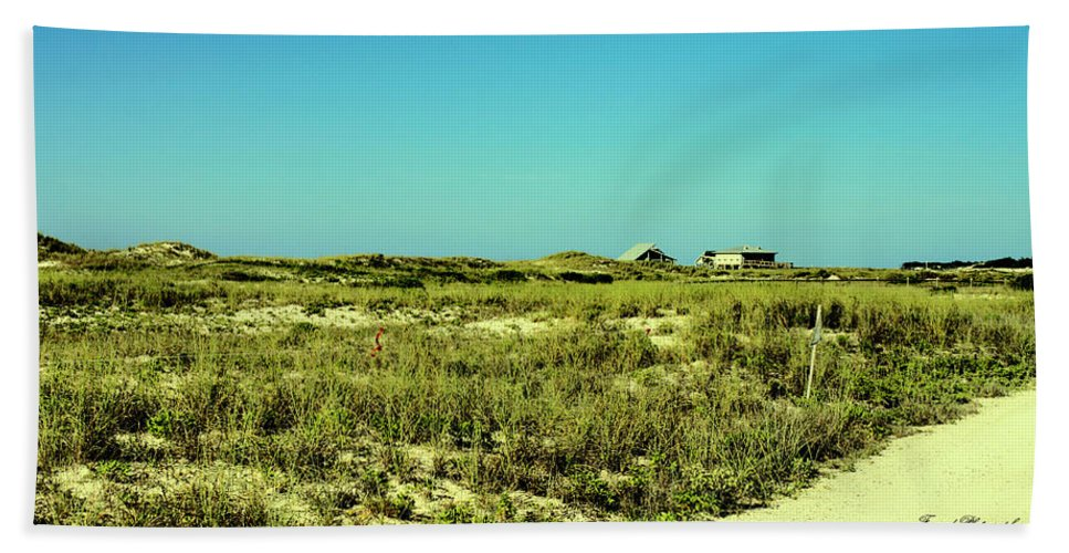St George Island Bath Sheet featuring the photograph The Nesting Grounds by Debra Forand