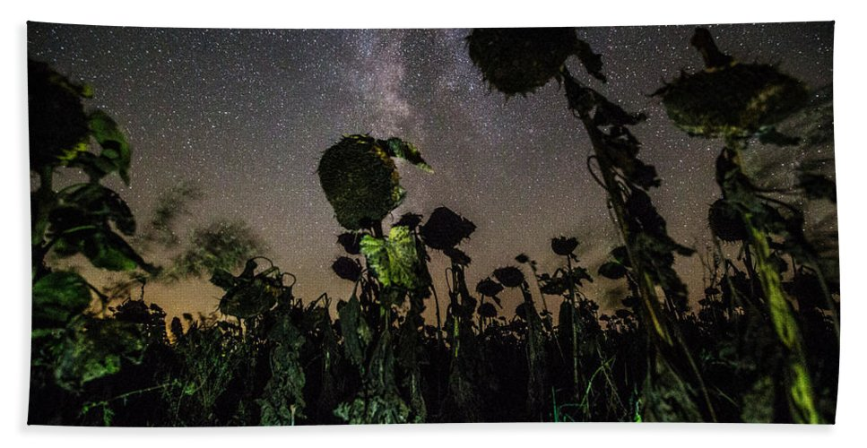 Plants Hand Towel featuring the photograph The Night Of The Triffids by Aaron J Groen