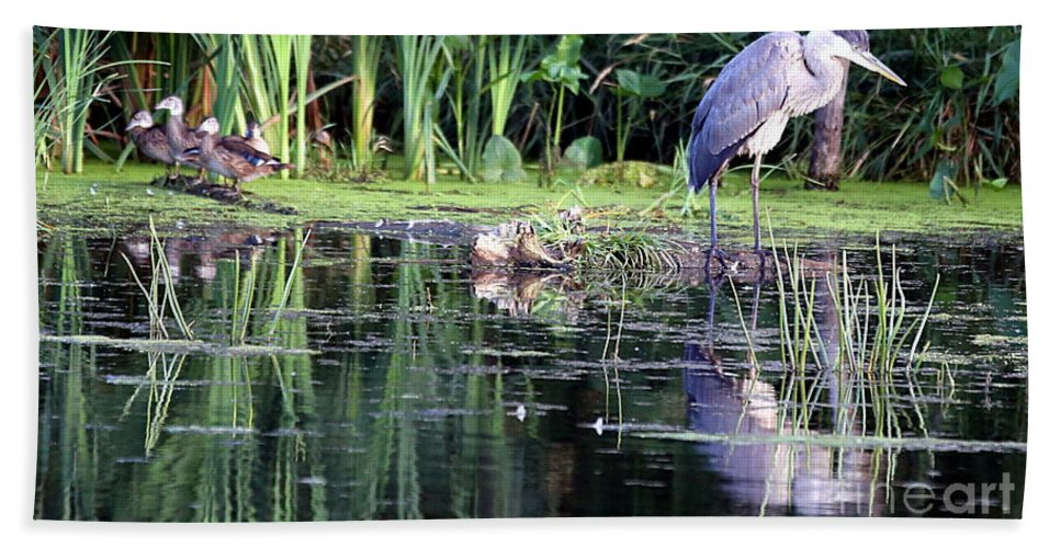 Great Blue Heron Hand Towel featuring the photograph The Night Watch by Elizabeth Winter