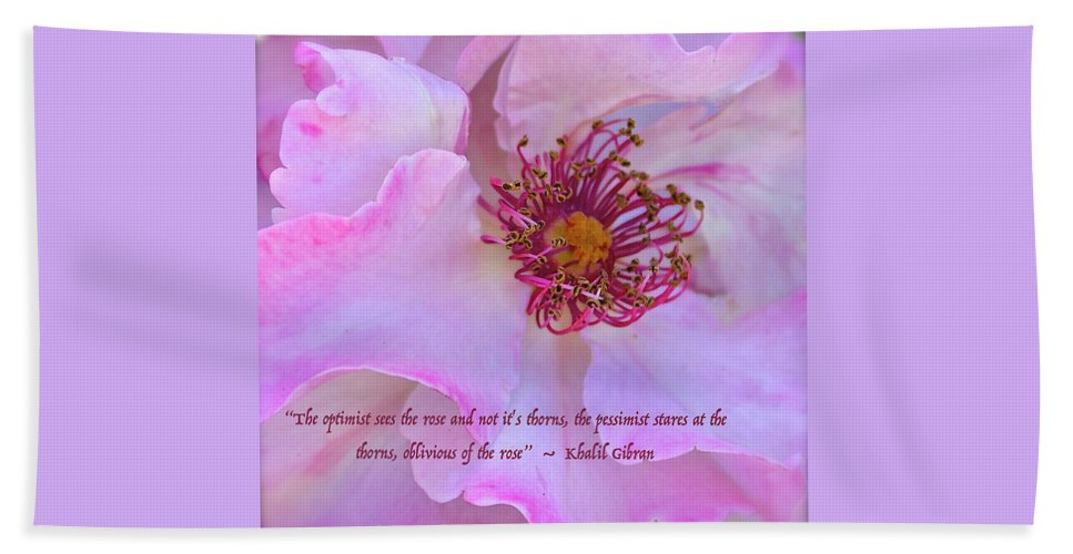Rose Bath Sheet featuring the photograph The Optimist Sees The Rose by Venetia Featherstone-Witty