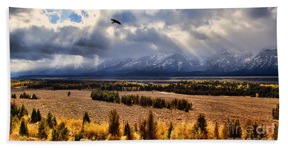 Tetons. Teton National Park Hand Towel featuring the photograph The Overlook by Jim Garrison