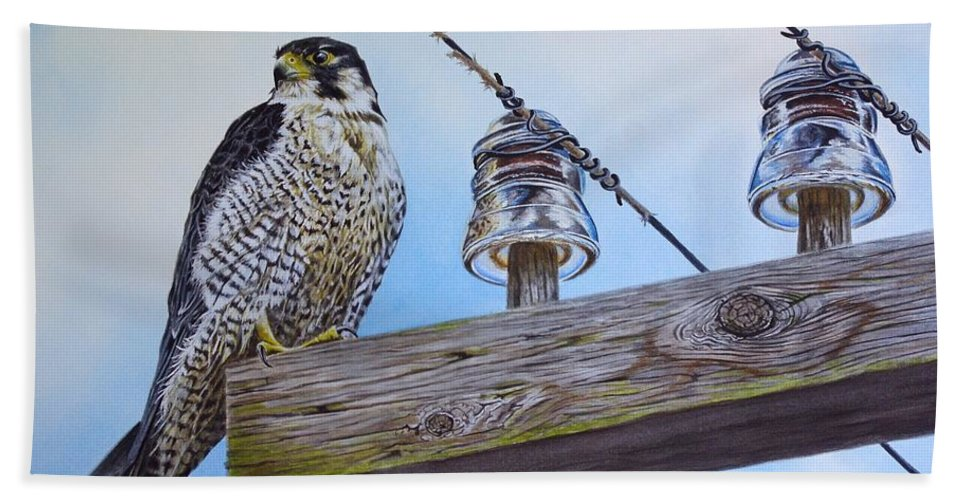 Peregrine Bath Sheet featuring the painting The Perfect Predator by Greg and Linda Halom