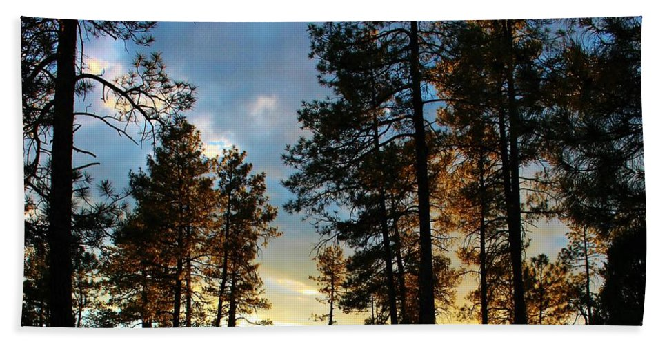 Sunset Trees Bath Sheet featuring the photograph The Pines At Sunset by Michelle Cassella