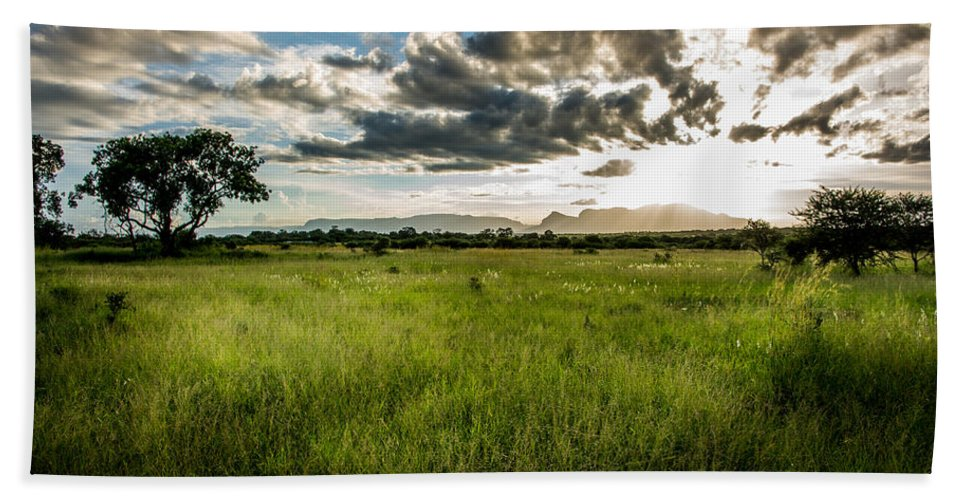 Africa Hand Towel featuring the photograph The Plains Of Africa by Andrew Matwijec