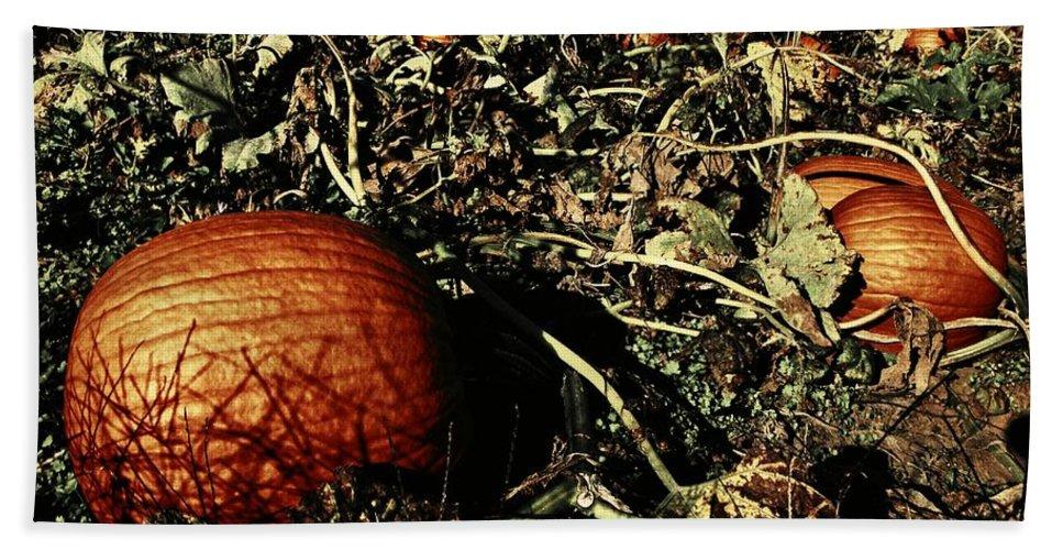 Halloween Bath Sheet featuring the photograph The Pumpkin Patch by Chris Berry