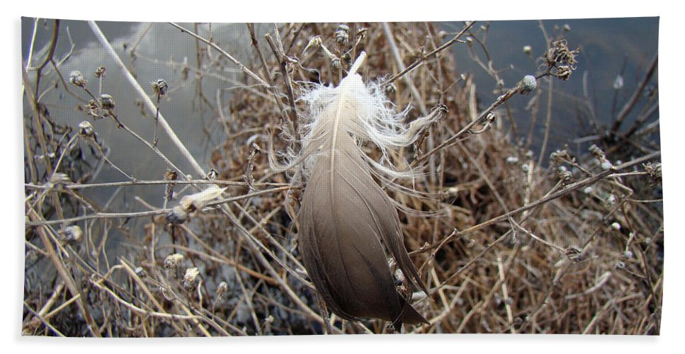 Feather Hand Towel featuring the photograph The Resting Place by Mother Nature