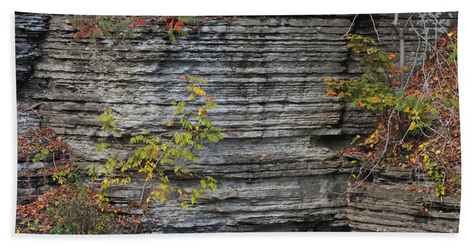 Water Bath Sheet featuring the photograph The Rock by William Norton