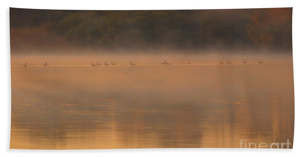 Serenity Bath Sheet featuring the photograph The Serenity Prayer by Elizabeth Winter