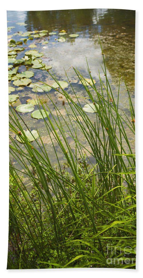 Water; Nature; Grasses; Lily; Lily Pond; Pads; Lily Pond; Green; Flowers; Reflection; Sky; Beautiful; Pretty; Natural; Side Hand Towel featuring the photograph The Side Of The Lily Pond by Margie Hurwich