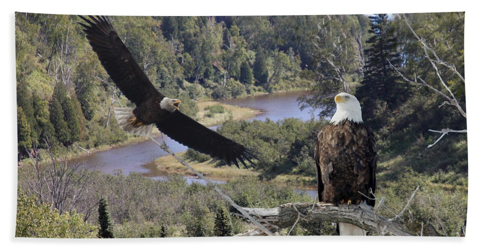 Eagle Bath Sheet featuring the photograph The Silent Watch by Lori Tordsen