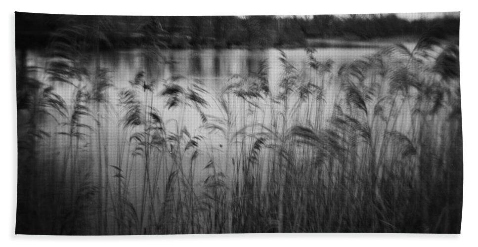 Holga Bath Sheet featuring the photograph The Softness Of Nature by Verana Stark