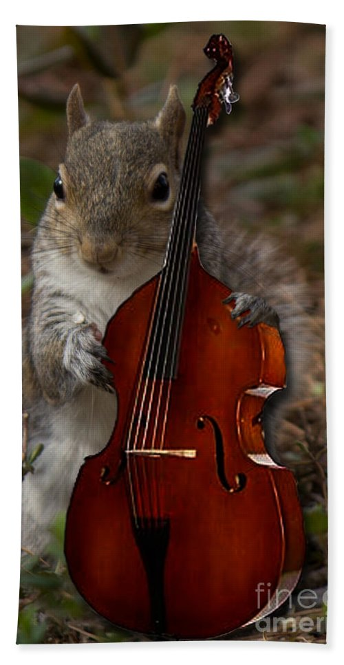 Wood Hand Towel featuring the photograph The Squirrel And His Double Bass by Sandra Clark