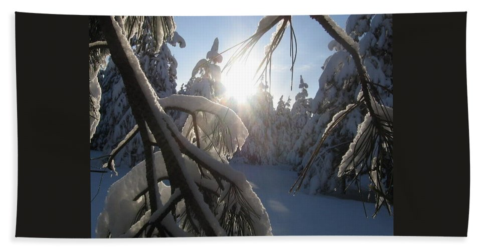 Landscape Bath Sheet featuring the photograph The Sun Through Snowy Branches by Jessica Wolf
