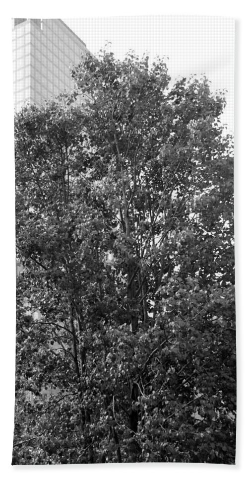 Wtc Hand Towel featuring the photograph The Survivor Tree In Black And White by Rob Hans