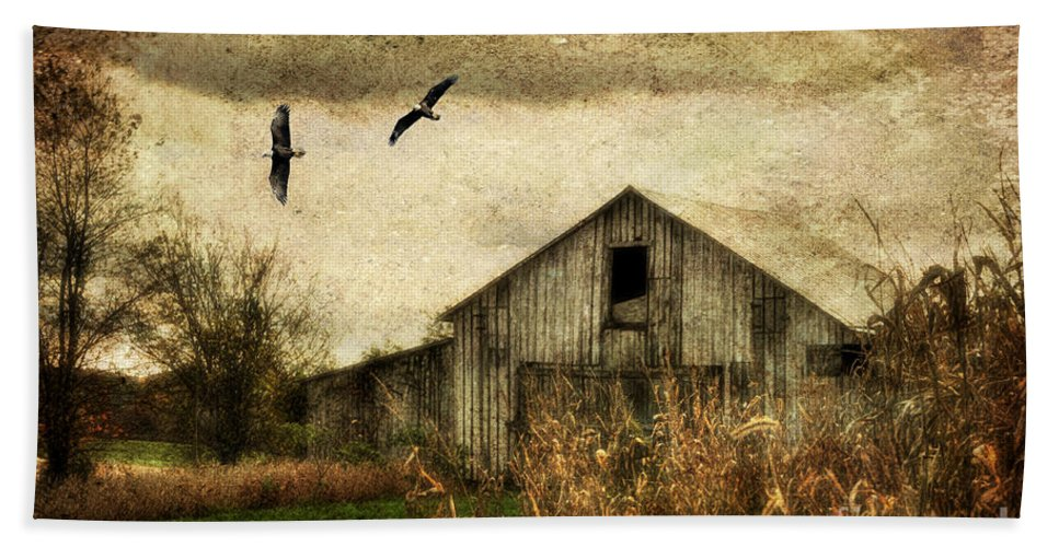 Barn Hand Towel featuring the photograph The Times They Are A Changing by Lois Bryan