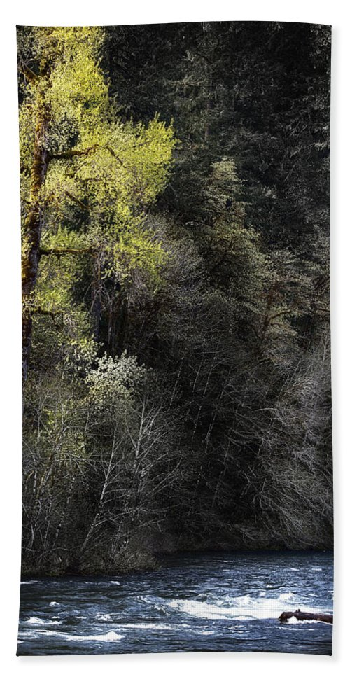 Tree Bath Sheet featuring the photograph The Tree Across The River by Belinda Greb