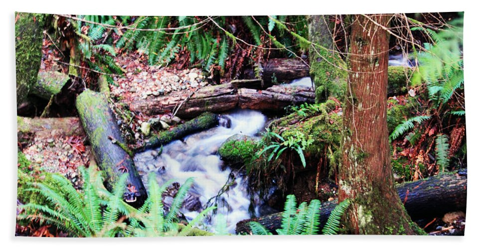 Creek Hand Towel featuring the photograph The Unknown Creek by Edward Hawkins II