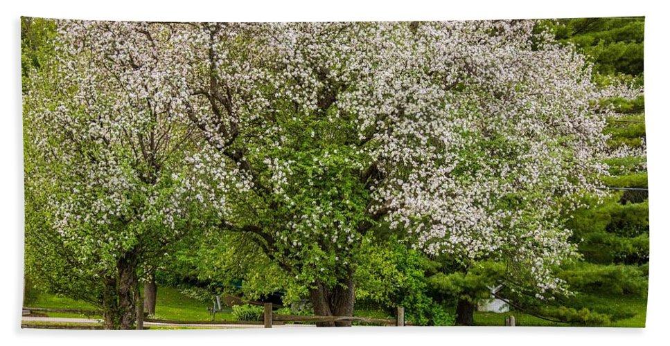 Bolton Bath Towel featuring the photograph The Valley Awakens by Steve Harrington