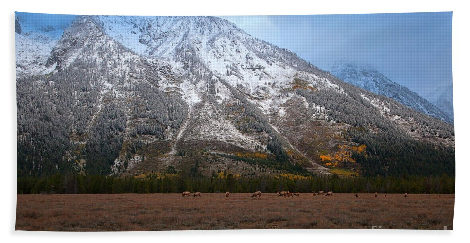 Teton National Park Hand Towel featuring the photograph The Valley Floor by Jim Garrison