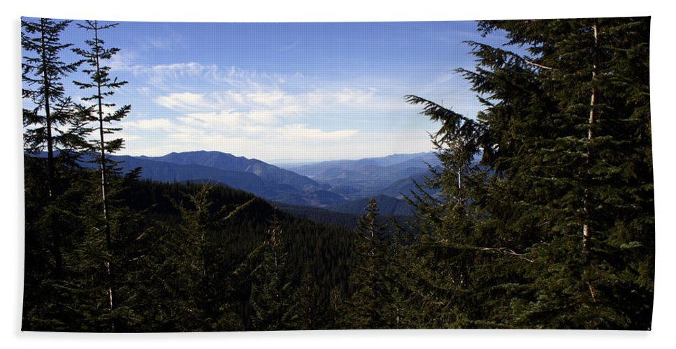 Nature Bath Sheet featuring the photograph The View From Nf 7605 No 1 by Edward Hawkins II