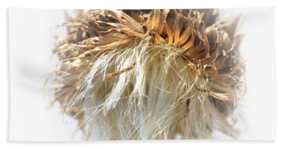 Thistle Abstract 14-1 Hand Towel featuring the photograph Thistle Abstract 14-1 by Maria Urso