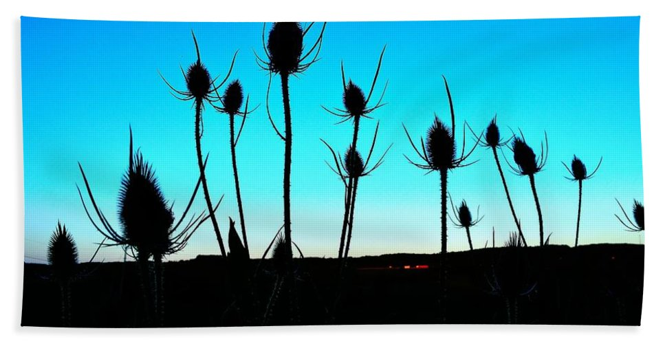 Thistle Hand Towel featuring the photograph Thistles At Sunset by Ray Sheley