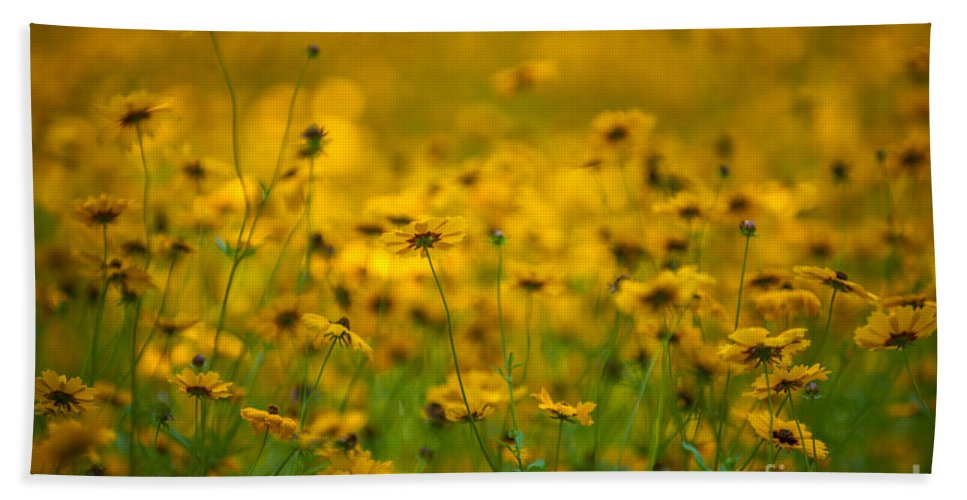 Flowers Hand Towel featuring the photograph Thoughts Of Spring by Dale Powell