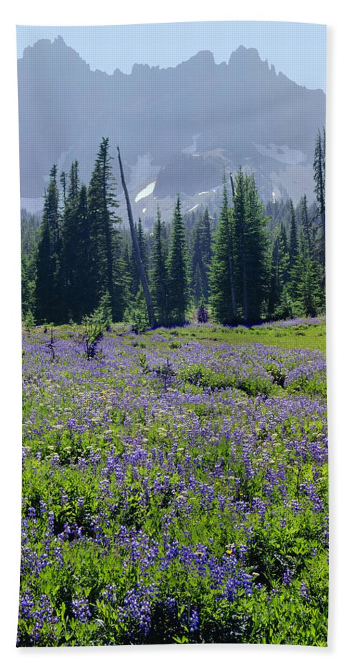 Three Fingered Jack Bath Sheet featuring the photograph 105417-three Fingered Jack And Wildflowers by Ed Cooper Photography