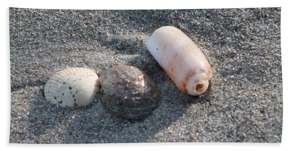 Beach Bath Sheet featuring the photograph Three Is Not A Crowd by Catie Canetti