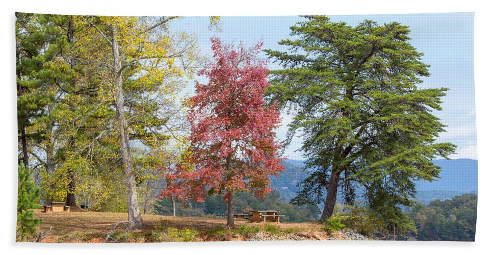 Landscape Hand Towel featuring the photograph Three Trees by John M Bailey