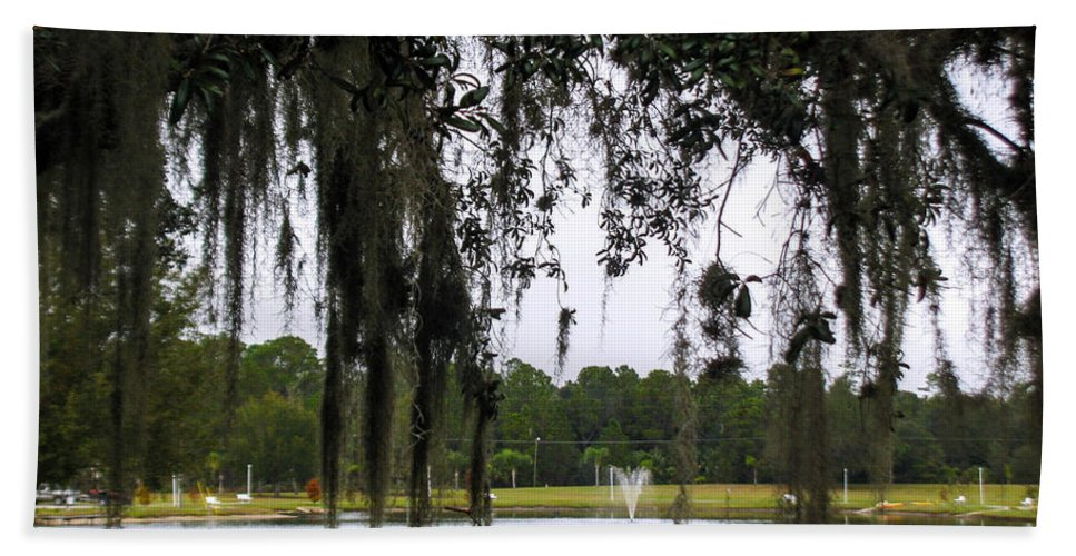 Live Oak Tree Hand Towel featuring the photograph Through Live Oak Tree by Zina Stromberg