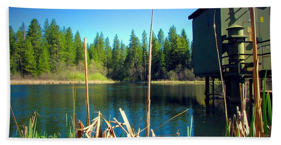 Grace-lake Hand Towel featuring the photograph Through The Reeds At Grace Lake by Joyce Dickens