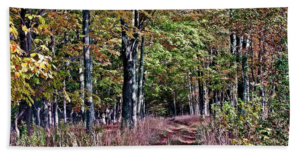 New York Hand Towel featuring the photograph Through The Woods by Christian Mattison