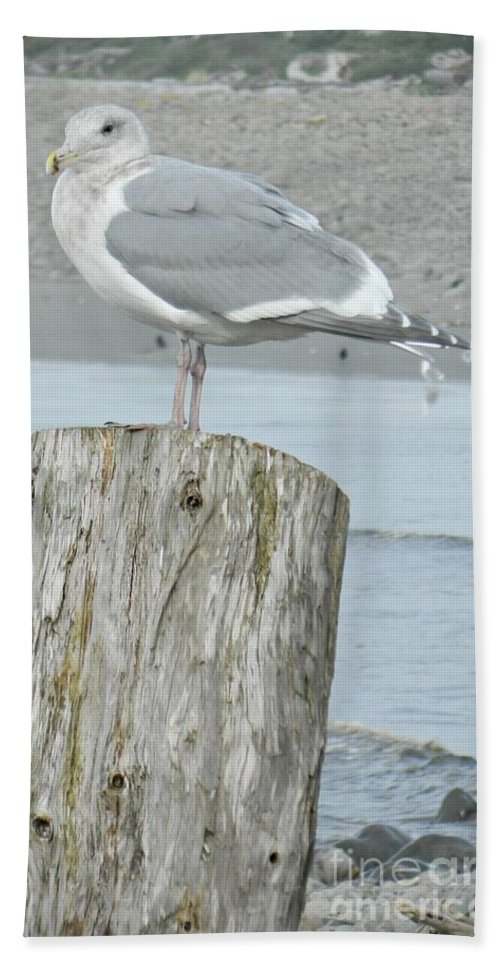 Tide Watcher Hand Towel featuring the photograph Tide Watcher by Chalet Roome-Rigdon