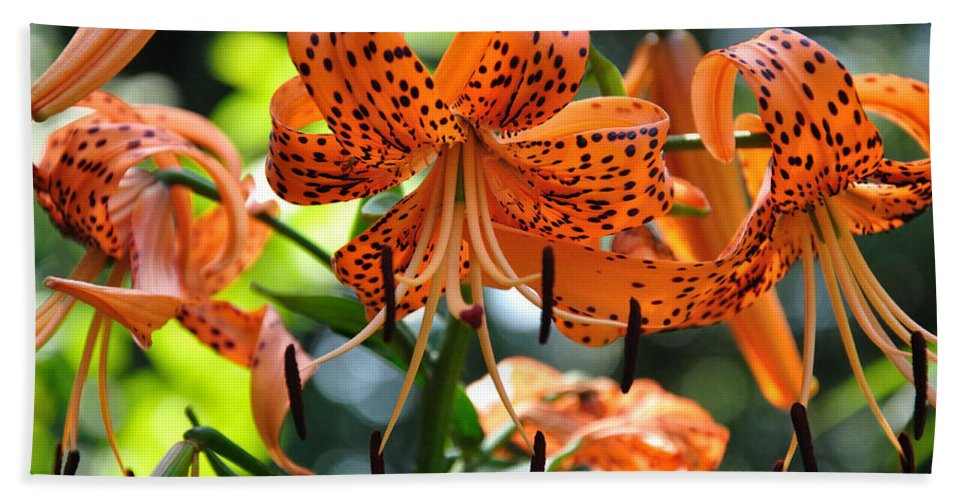 Tigerlily Bath Sheet featuring the photograph Tiger Lilies by Sonja Dover