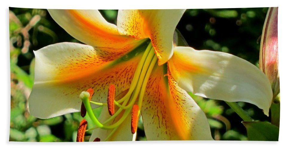 Tiger Lily Bath Sheet featuring the photograph Tiger Lily by Lena Photo Art