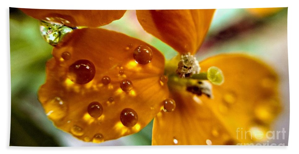 Dew On Wildflower Bath Sheet featuring the photograph Tiny Dew Drop On Wild Flower Macro by Peggy Franz