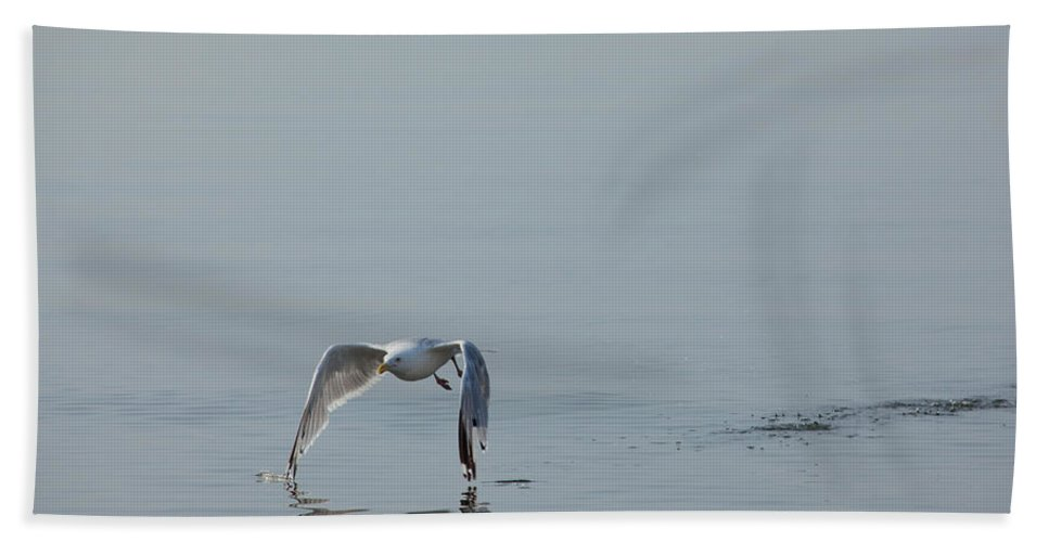 Gull Bath Sheet featuring the photograph Tips Touching by Karol Livote