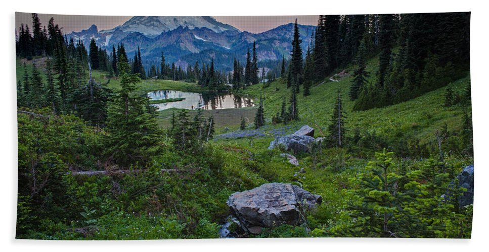 Rainier Hand Towel featuring the photograph Tipsoo Meadows by Mike Reid