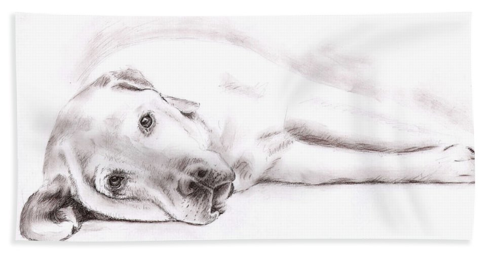 Dog Bath Towel featuring the drawing Tired Labrador by Nicole Zeug