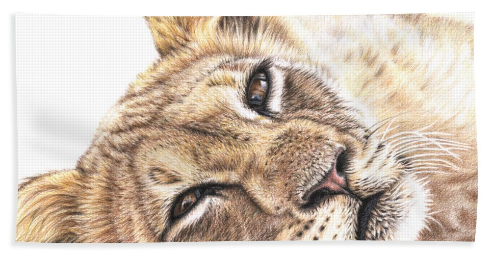 Lion Hand Towel featuring the drawing Tired Young Lion by Nicole Zeug