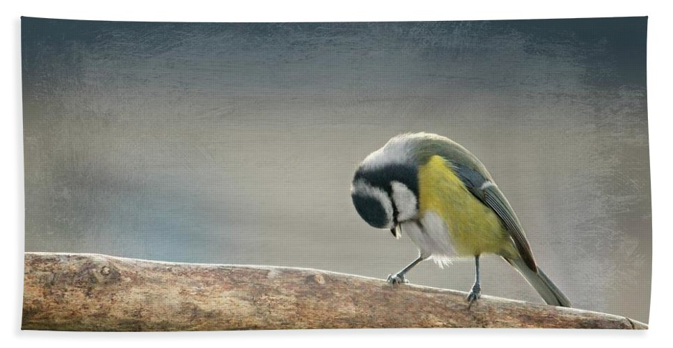 Autumn Hand Towel featuring the photograph tit by Heike Hultsch