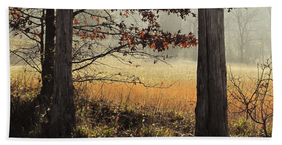 Tree Hand Towel featuring the photograph Tommy's Serenity by Trish Tritz