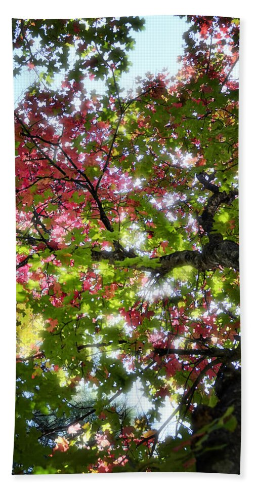 Tree Bath Sheet featuring the photograph Touches Of Autumn by Saija Lehtonen