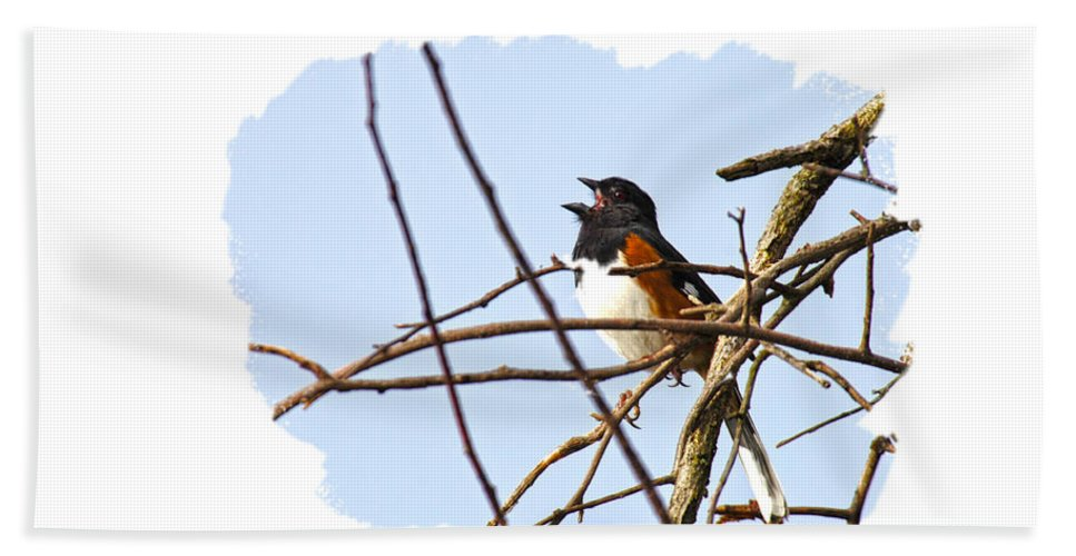 Towhee Hand Towel featuring the photograph Towhee Singing On Top Of Mountain by Randall Branham