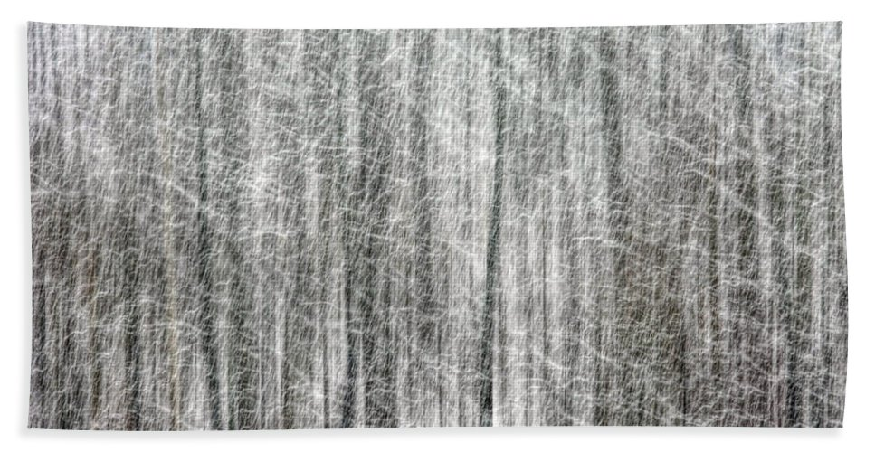 C&o Canal Hand Towel featuring the photograph C And O Towpath Blizzard by Francis Sullivan