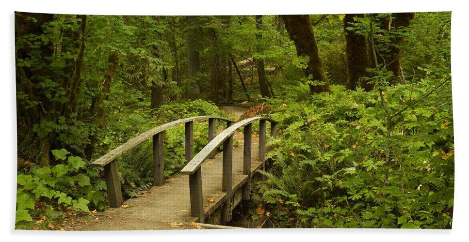 Trail Bath Sheet featuring the photograph Trail Bridge Toketee 1 by John Brueske